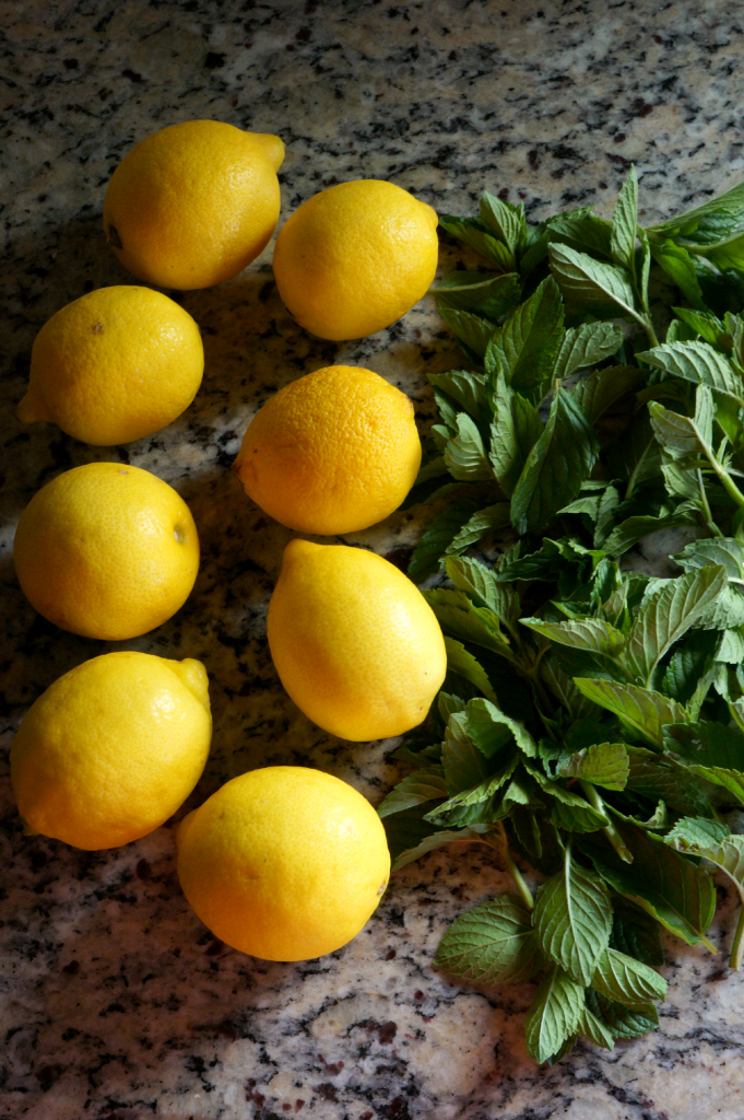 mint lemonade | The Baking Fairy