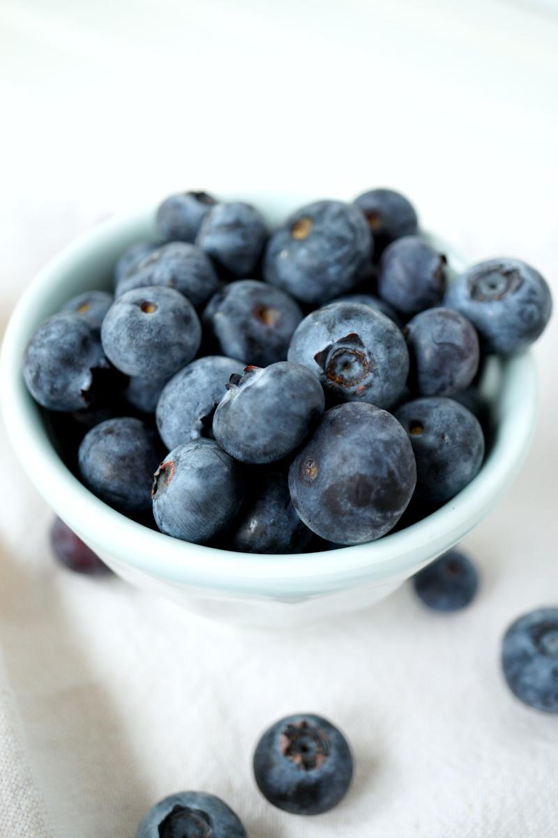 blueberry lemon snack cake | The Baking Fairy