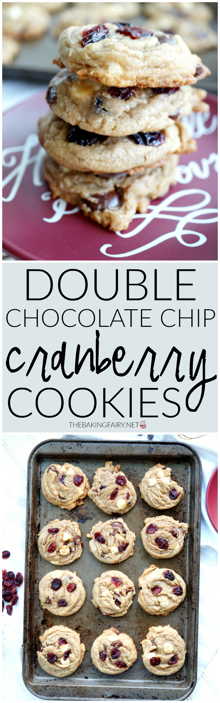 double chocolate chip cranberry cookies   The Baking Fairy