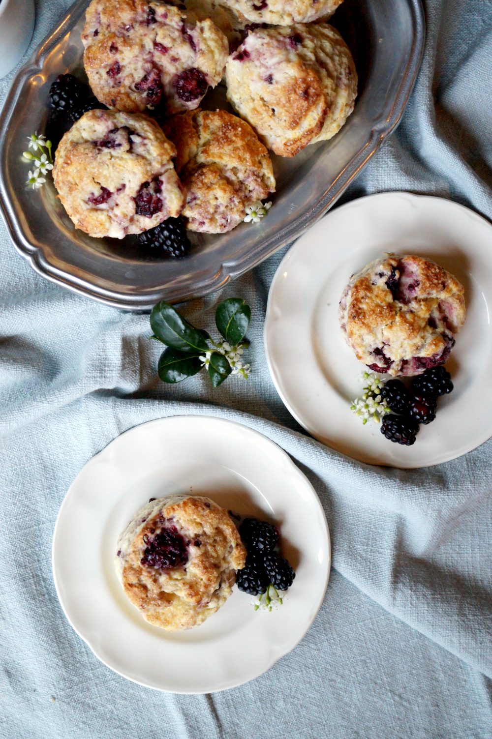 blackberry lime cream cheese scones | The Baking Fairy