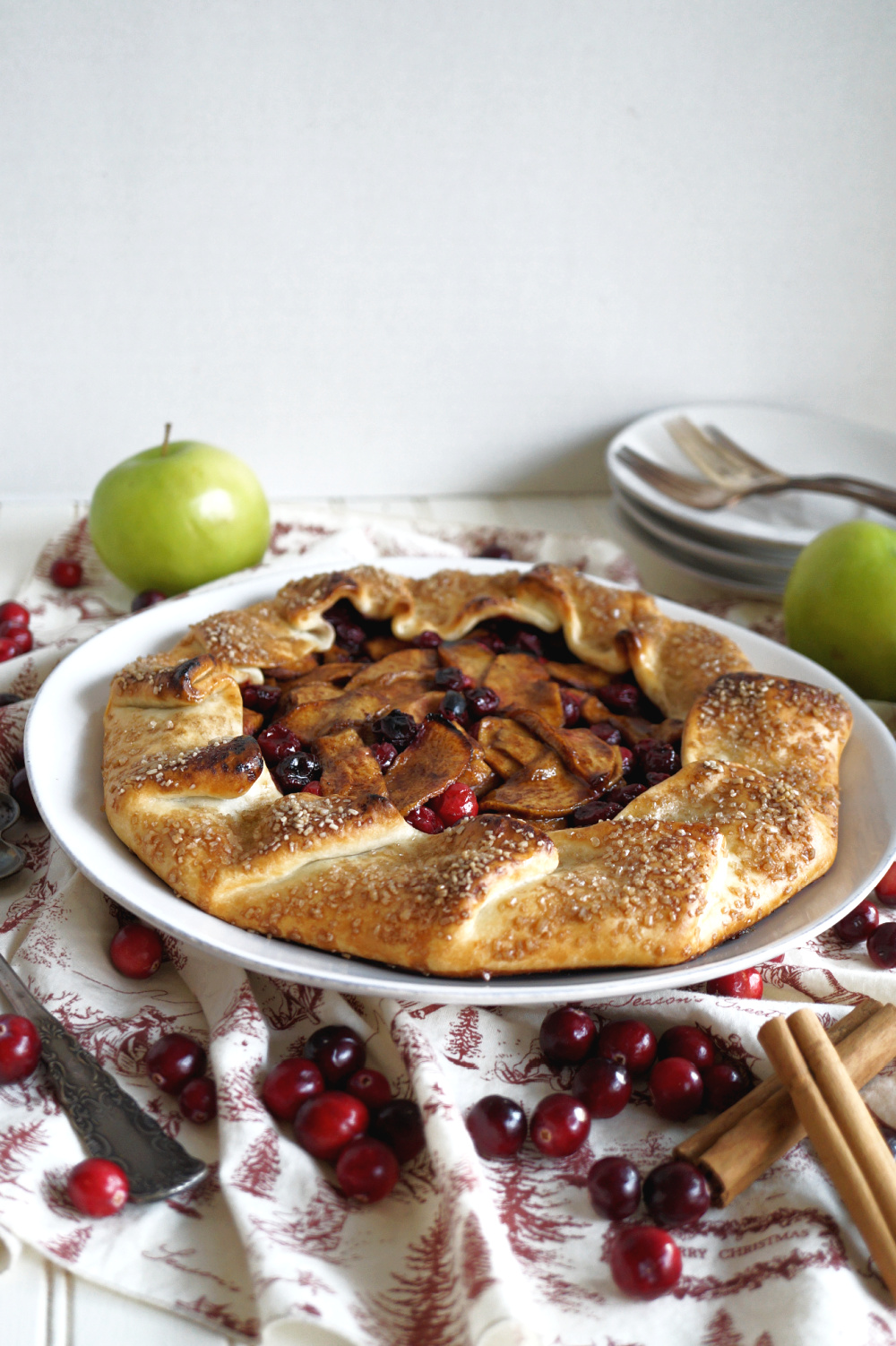 apple cranberry galette on plate