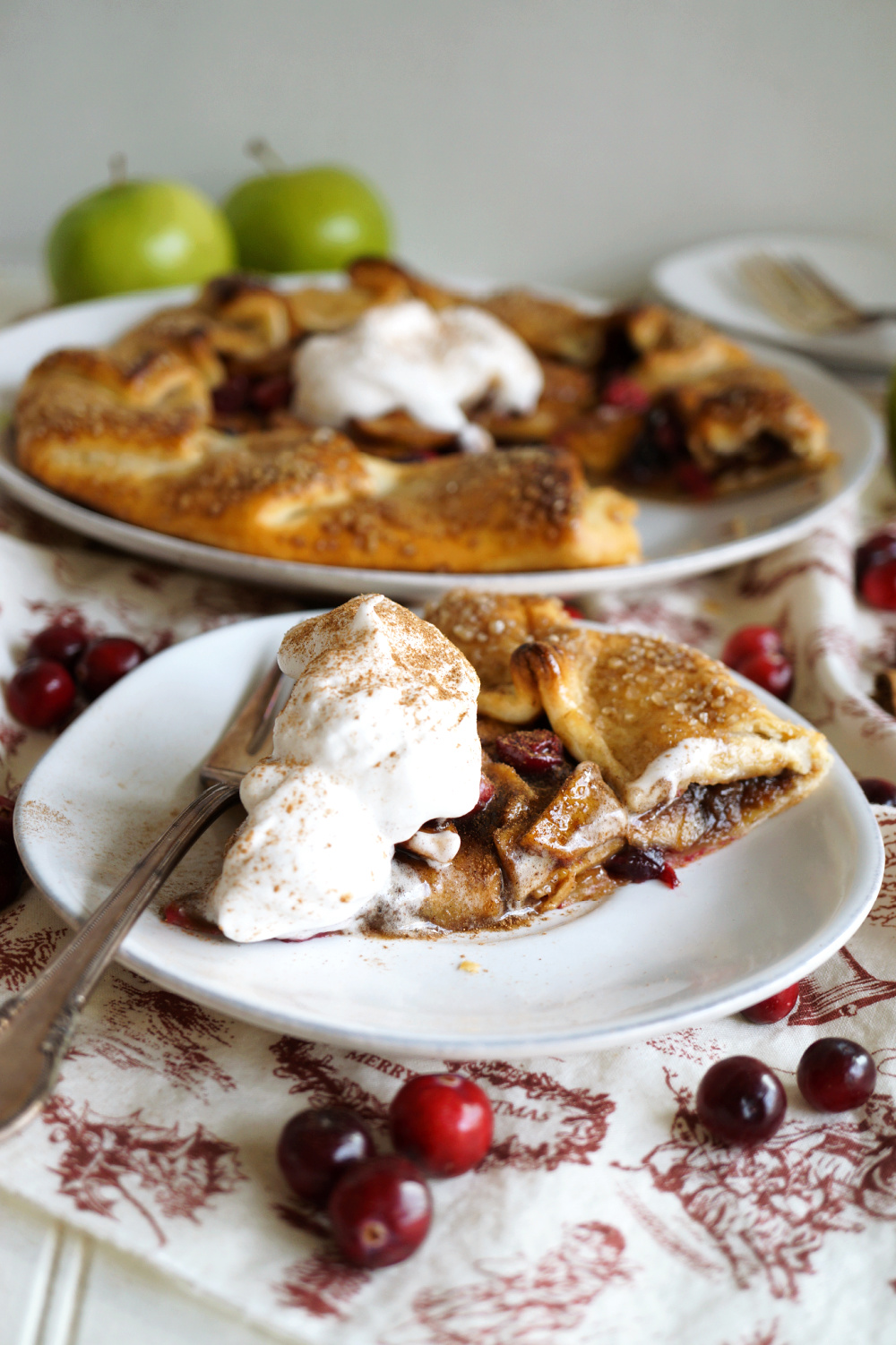 slice of apple cranberry galette on plate